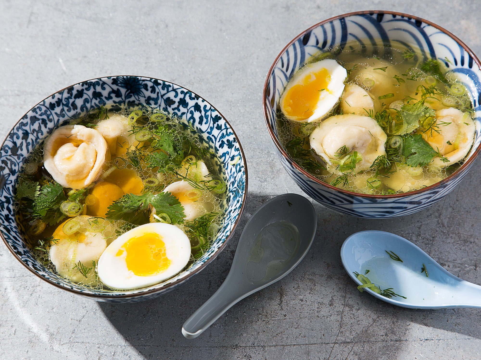 The Russian Chicken Soup with an Eye on Japan