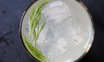 Friday Cocktails: Caraway Fizz