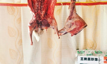 In Mongolia, Dinner Begins With a Whole Lamb and a Bottle of Vodka