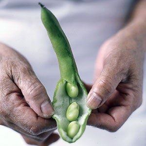 Getting to the Good Part of Favas