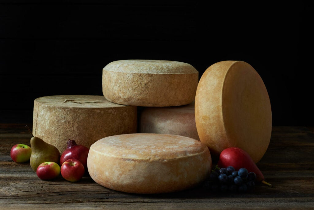 Your family will love this photo of cheese.