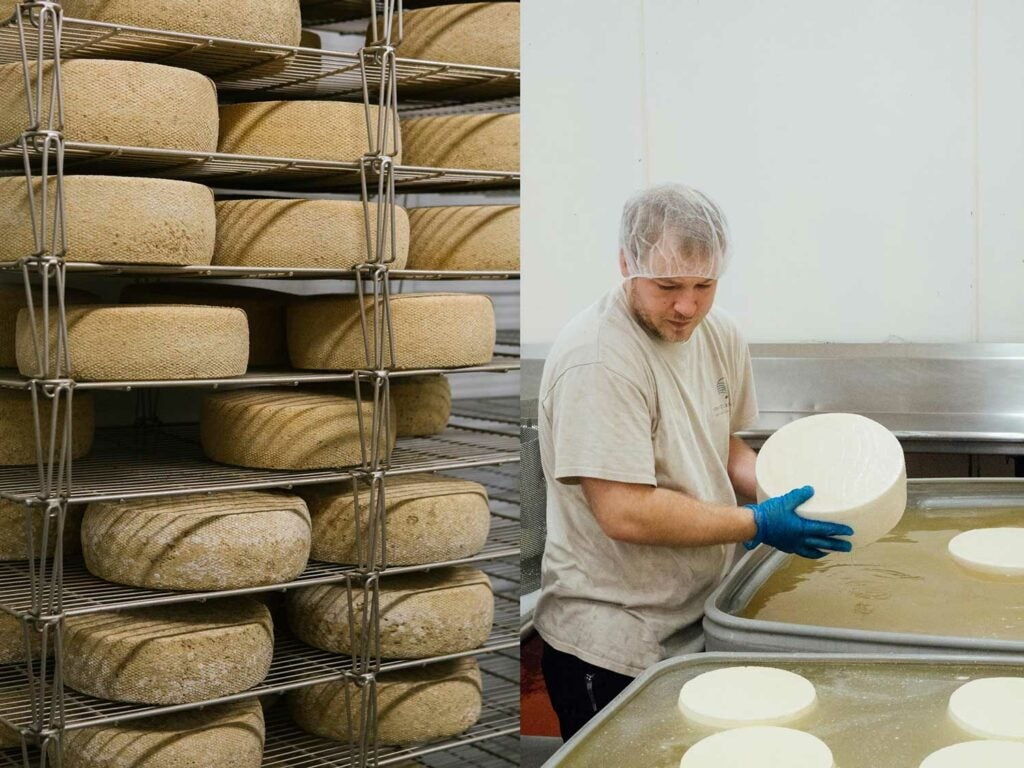 award-winning cheese producer
