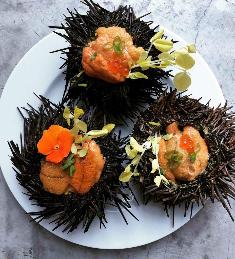 These urchins were stuffed to the brim with biryani and uni.