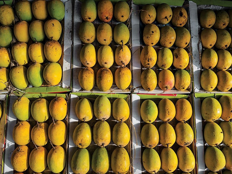 Video: How to Peel a Mango with a Water Glass