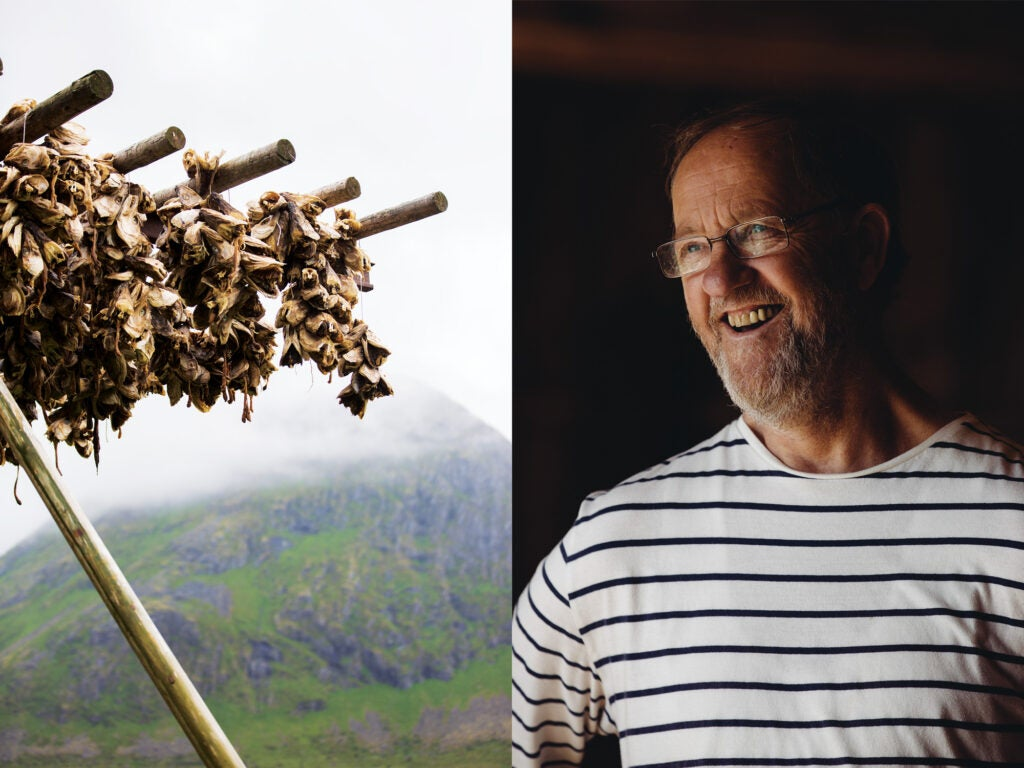 Left: Dozens of cod heads are strung up in bunches to dry on racks near the ocean. Most of these are exported to Nigeria, while many of the bodies, once dried, go to Italy. | Right: Steinar Larsen, the owner of the Lofoten Stockfish Museum in Å, near the southern tip of the archipelago.