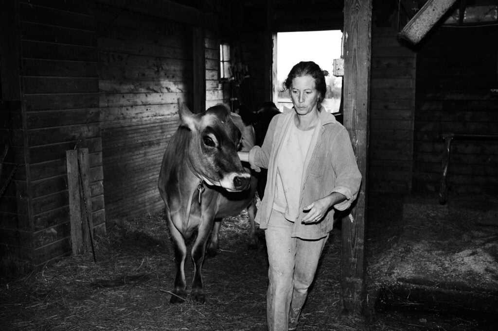 St. Clair with one of her 11 Jersey cows on her Vermont property