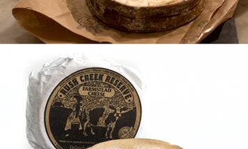 Winter Cheeses