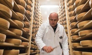Meet Switzerland's Breakaway Cheesemakers