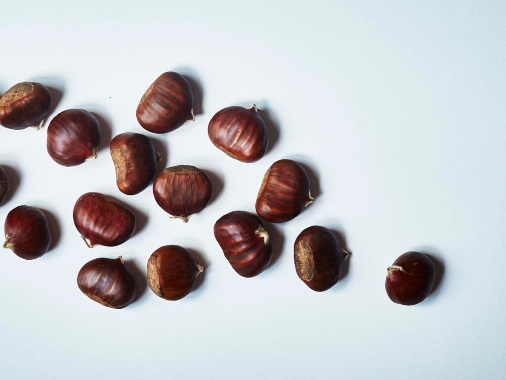 """chestnuts"""