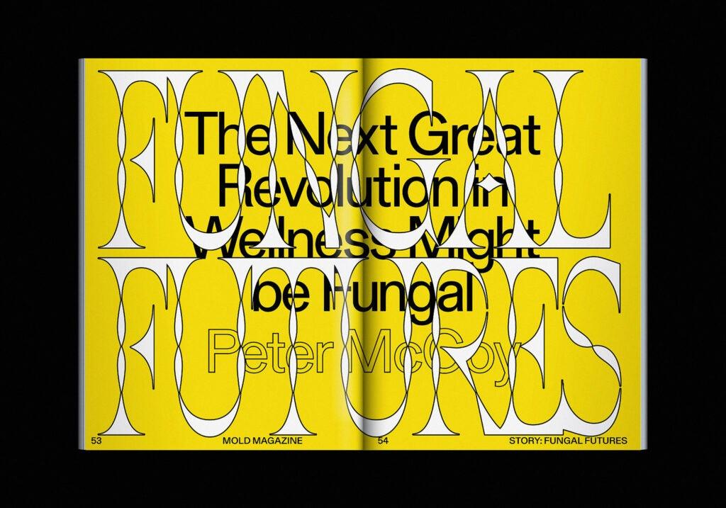 Fungal Futures MOLD Magazine