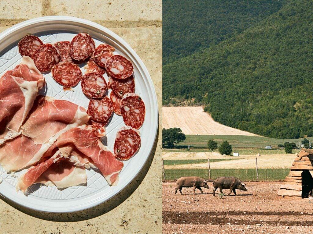 castelluccio pork