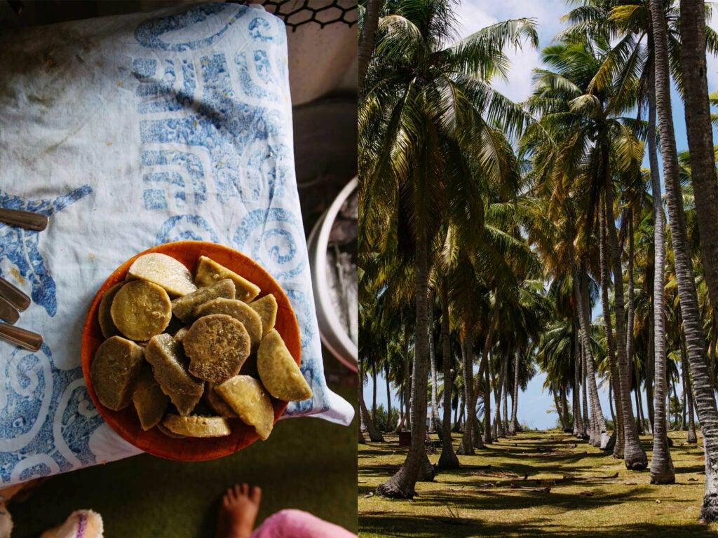 a bowl of taro and the atoll rangiroa