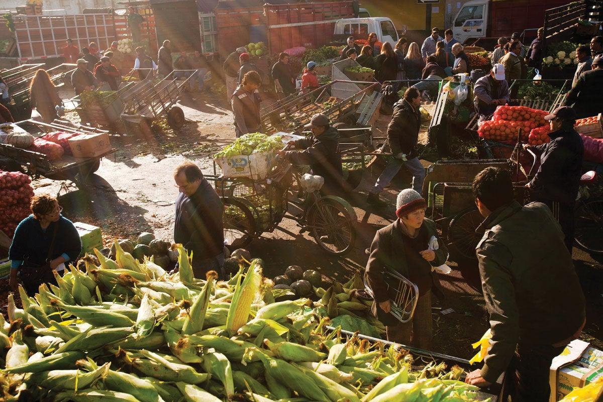 La Vega Central Market