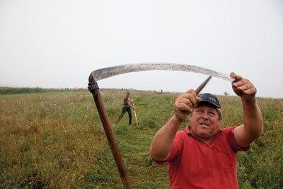 A farmer sharpening his scythe in a field outside of Miklosvar