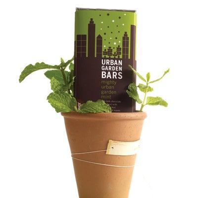 One Good Find: John & Kira's Mighty Urban Garden Mint Bar