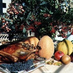 Harvesting the American Feast
