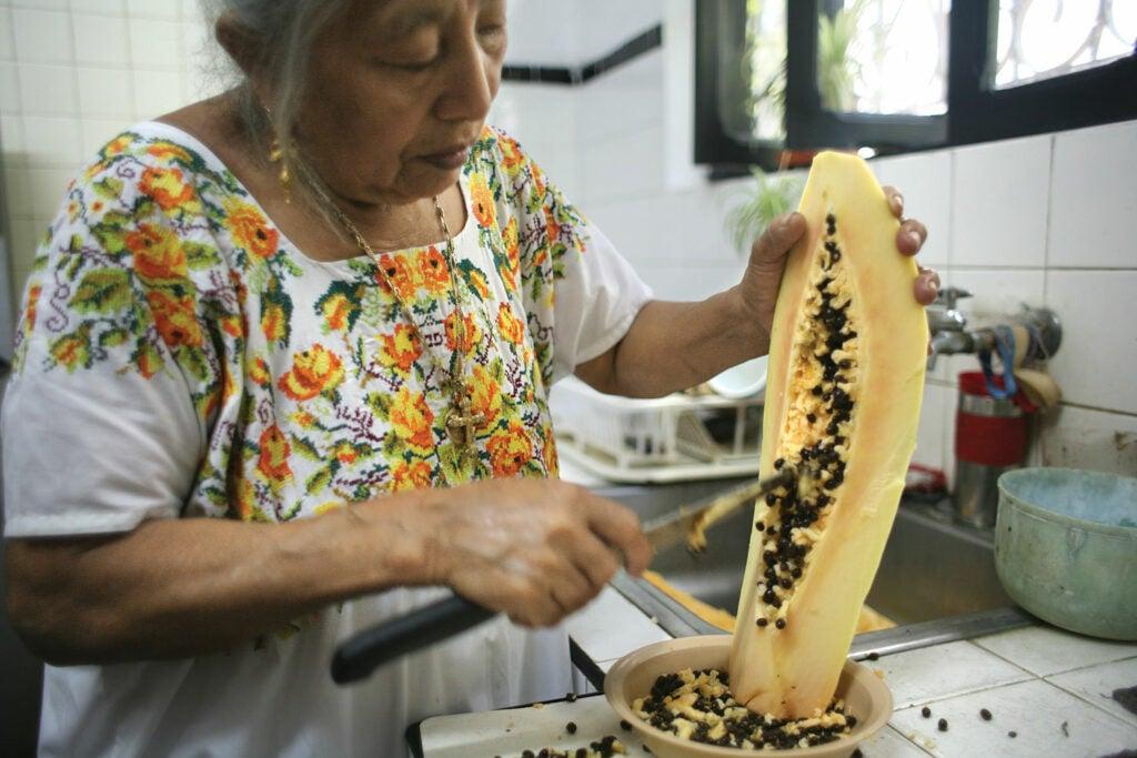 httpswww.saveur.comsitessaveur.comfilesimport2012images2012-077-SAV149-Yucatan8-1500×1000.jpg