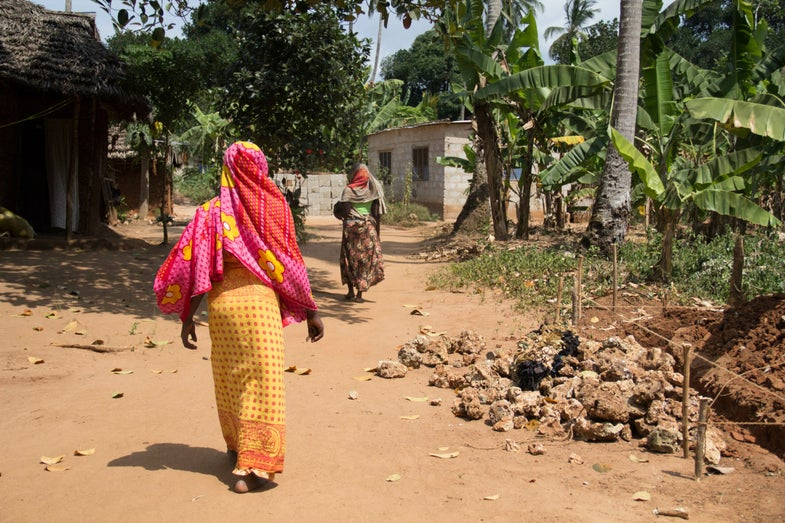 Scenes from Tanzania