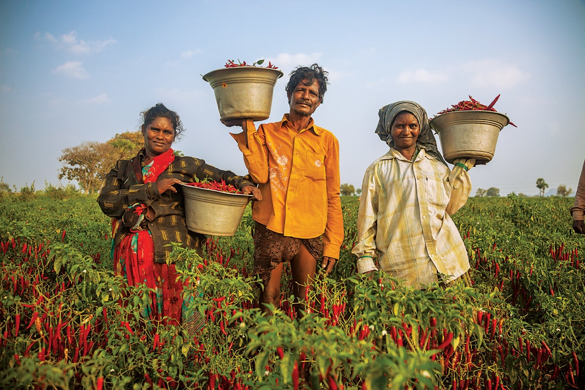 South India Field Workers