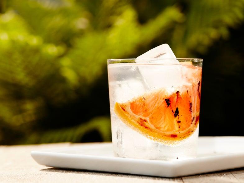 Smoky Grapefruit Gin and Tonic