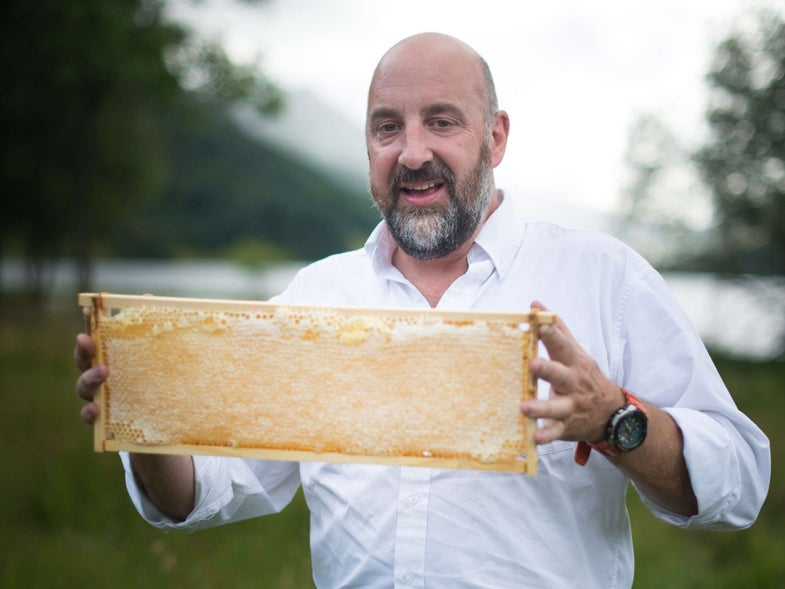 What Happens When Every Element of Nature Conspires to Keep You From Making Honey? It Tastes Incredible