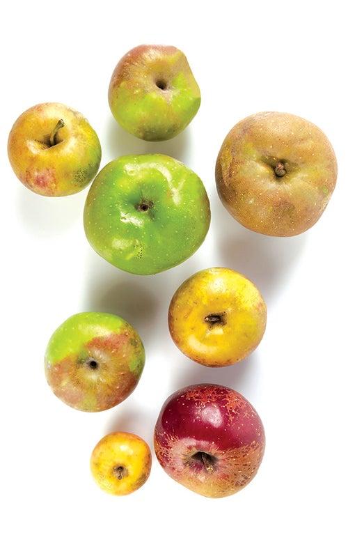DIY spiced hard apple cider