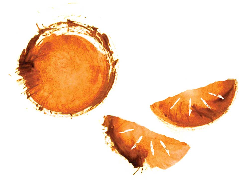 Creole Shrubb (Clementine Liqueur)