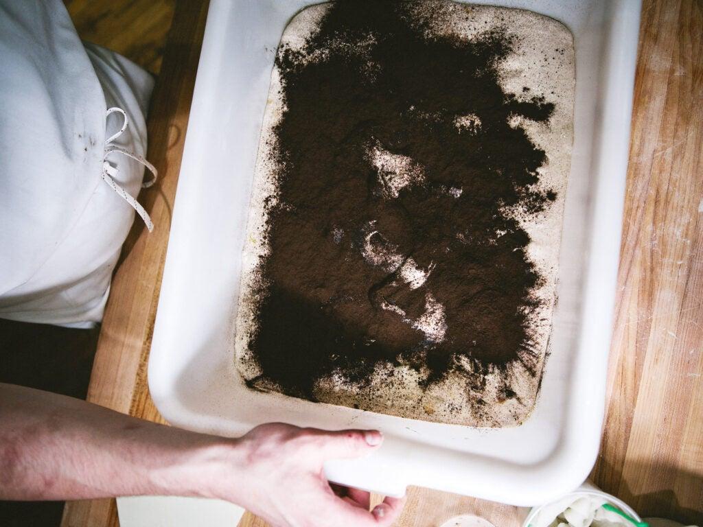 Vegetable Ash, Charcoal story