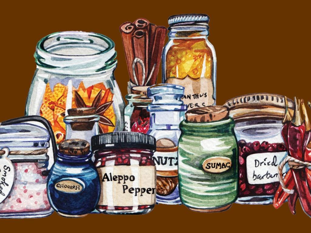 Spice Cabinet Illustration