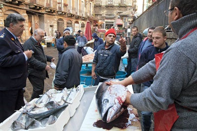 The Freshest Catch: The Fish Market in Catania, Sicily