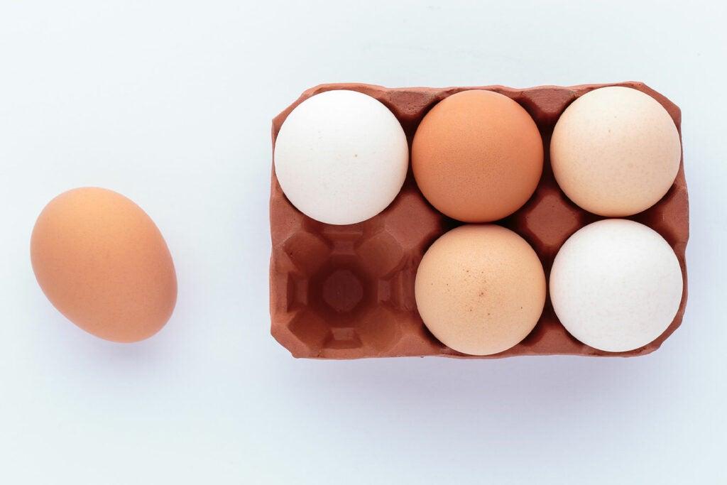 English Terra Cotta Egg Rack