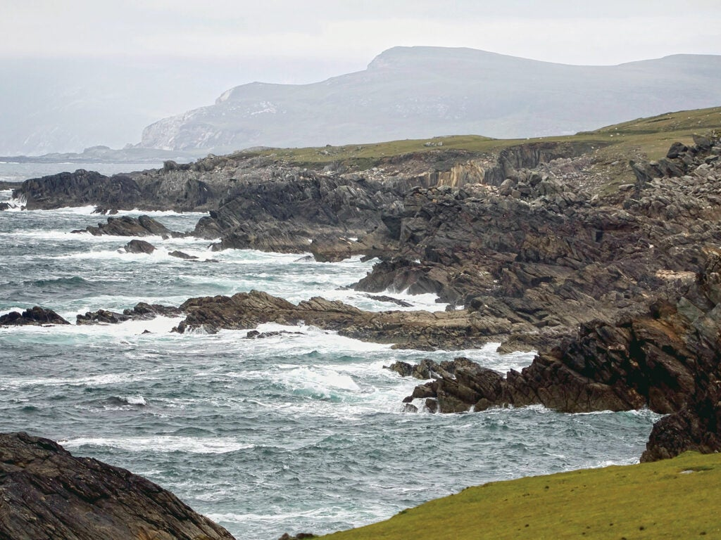 Ireland's Culinary Coast
