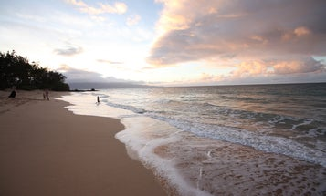 The Guide: Where to Eat and Stay in Maui