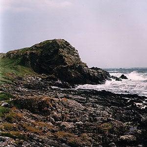 Whisky Island