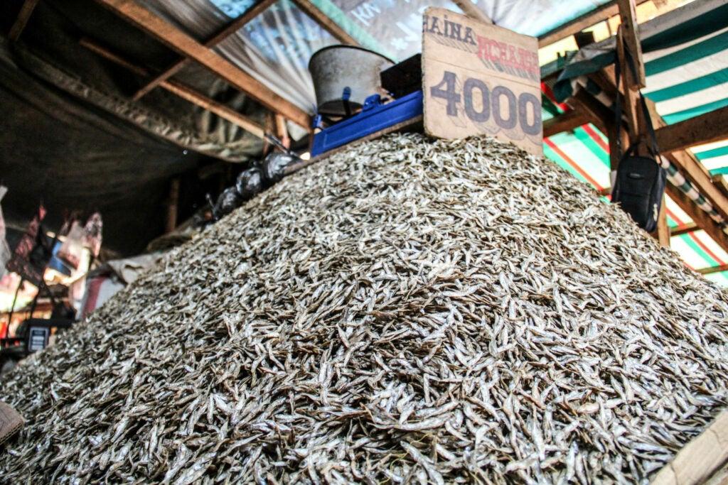 Dried Fish in Tanzania