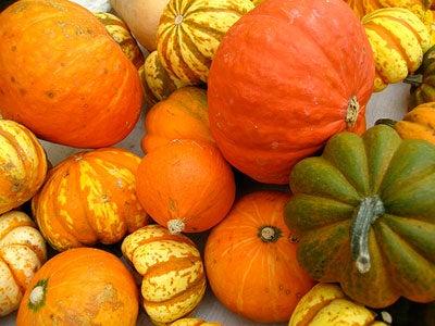 The Great Pumpkin Shortage