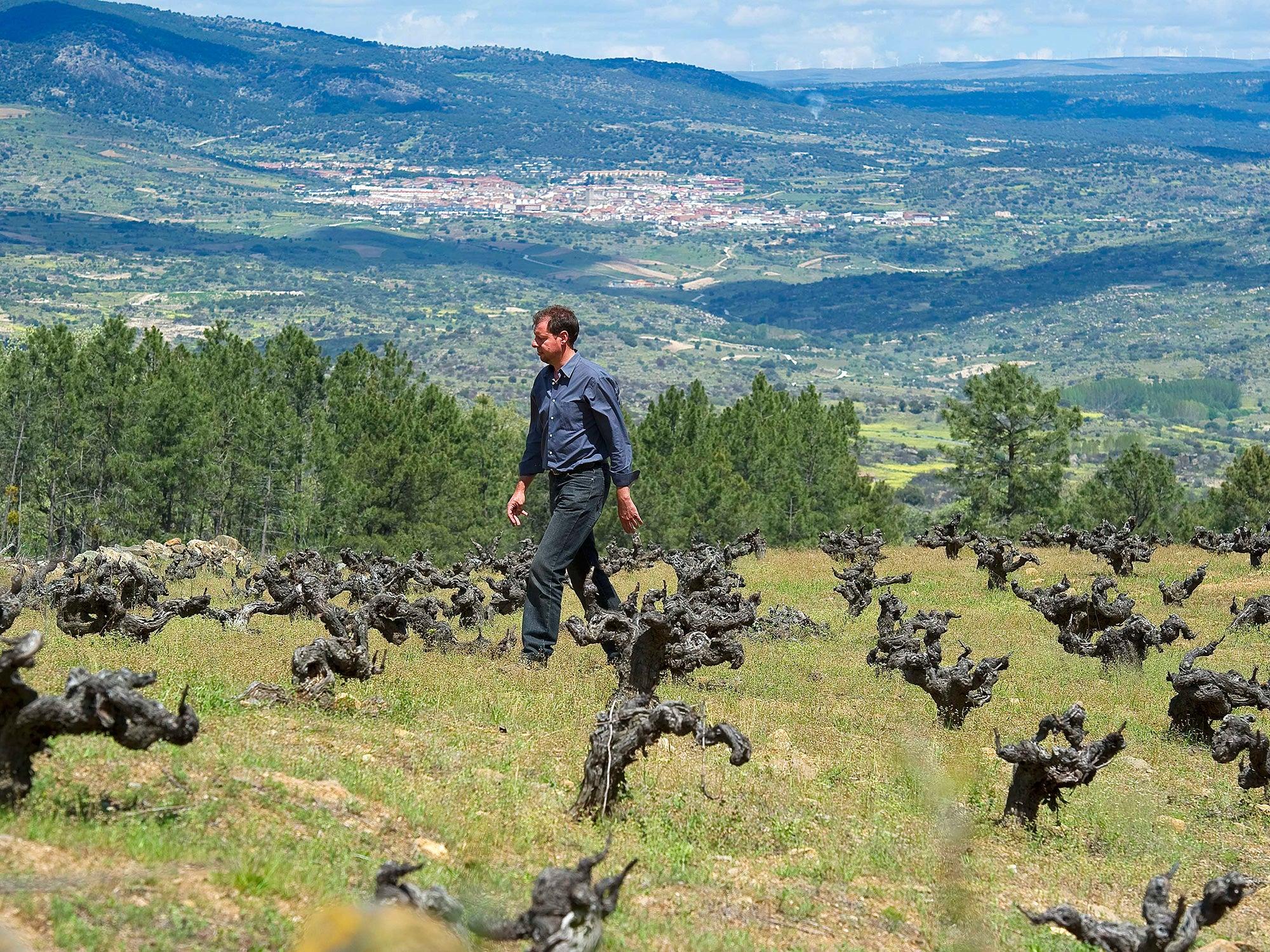Natural Spanish Wine: Meet The New Vanguard