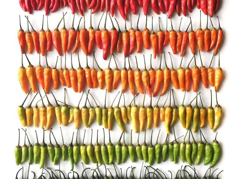 Meet the SAVEUR Blog Awards Finalists: 6 Must-Follow Food Instagram Accounts