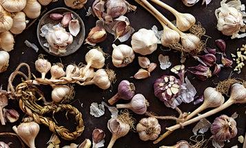 The World of Garlic