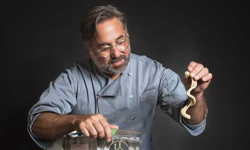 Marco Canora is Showing Just How Great Whole Wheat Pasta Can Be