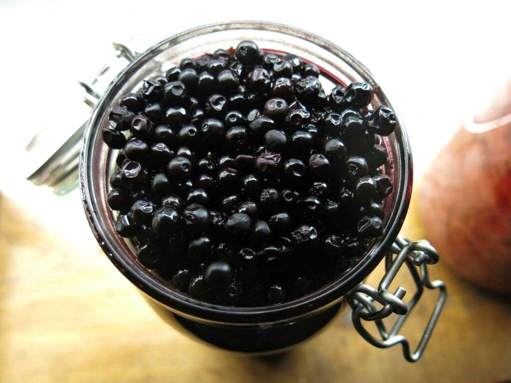 Iceland Crowberries