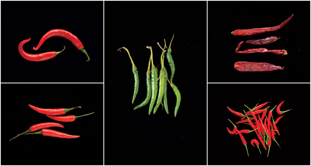 httpswww.saveur.comsitessaveur.comfilesimport2013images2013-03103-gallery_sichuan-flavors-peppers_1000x534.jpg
