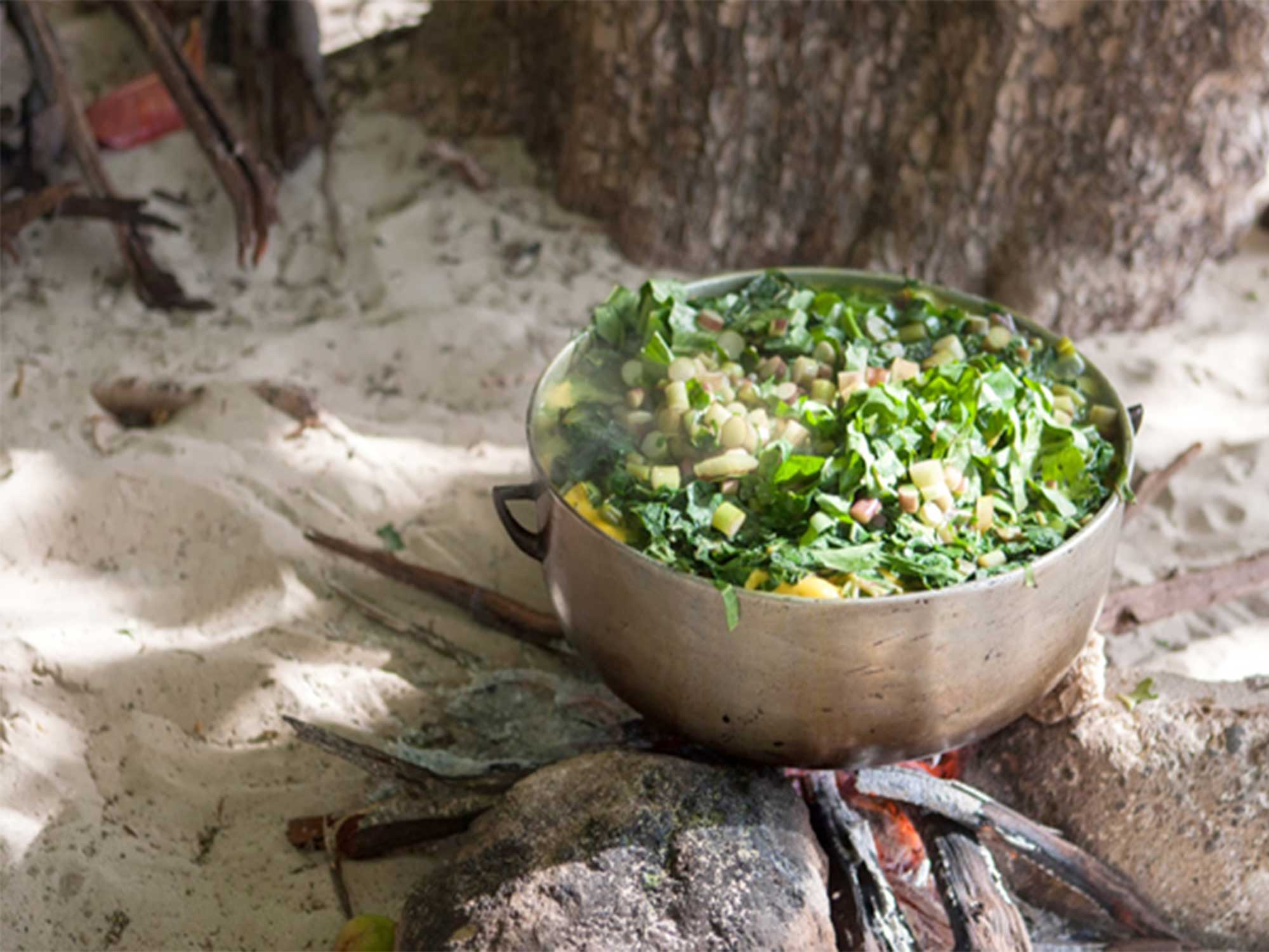 SAVEUR's Caribbean Island Guide: The Best Places to Eat, Stay, and Explore