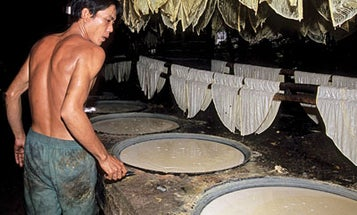 Sacred Soy: The Diverse Pleasures of Yuba