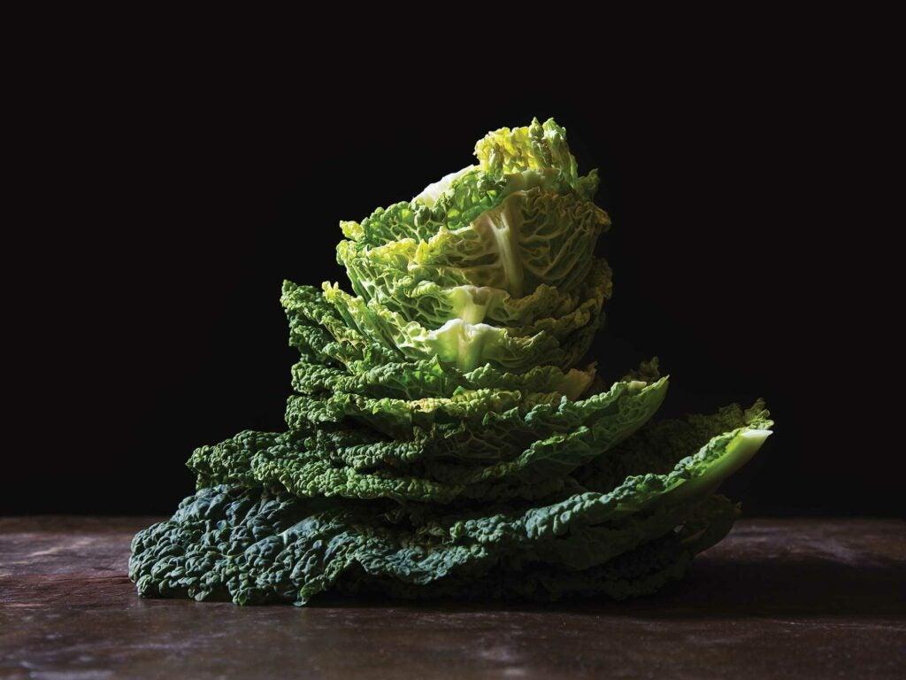 lou fassum cabbage