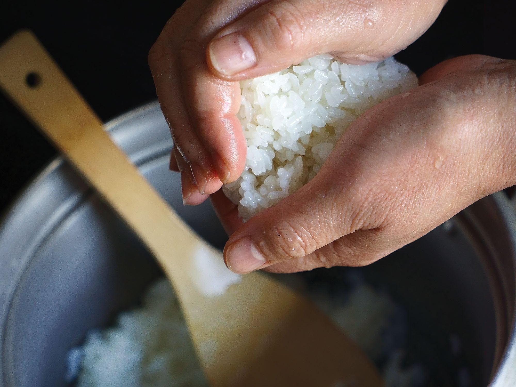 Onigiri, hands, forming