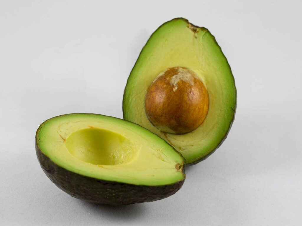 """""""avocados"""