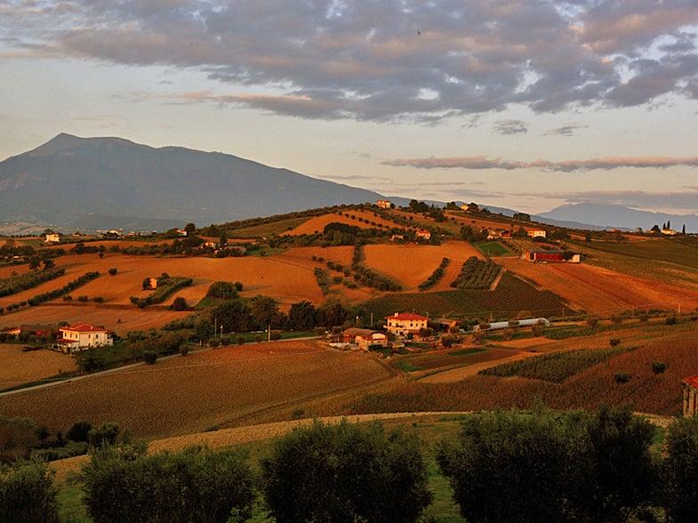 Abruzzo, Roadtrip, Emidio Pepe