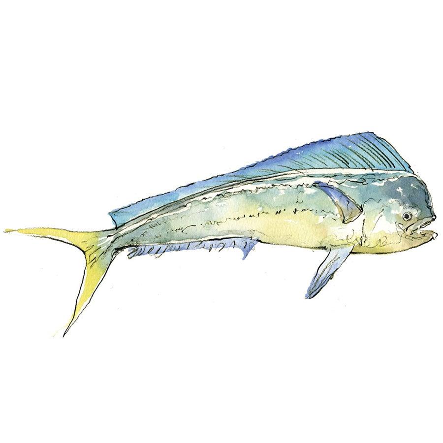 """""""seafood,"""
