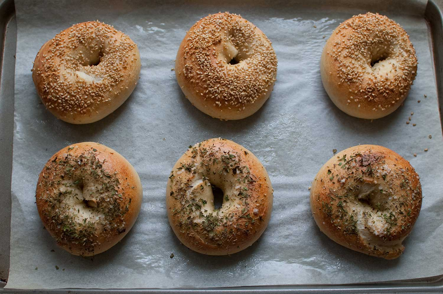 Wise Sons Jewish Delicatessen is Feeding Tokyo's Bagel Obsession